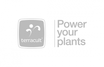 Terracult International GmbH